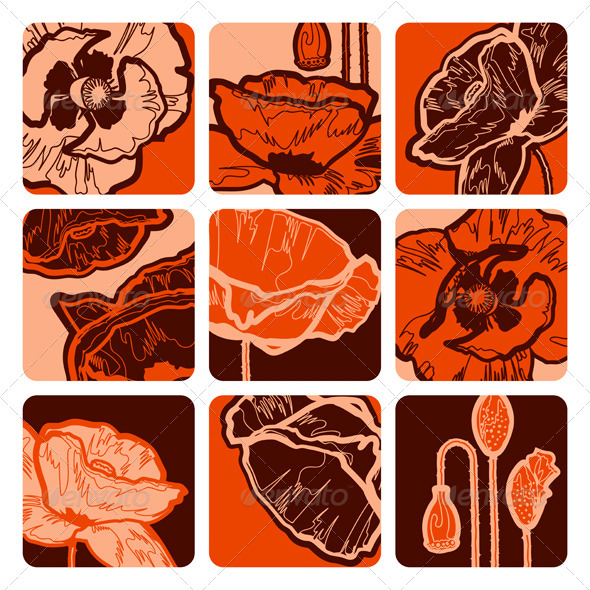 Poppy Squares - Flowers & Plants Nature