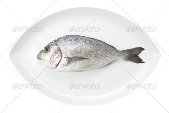 Dorada seafood on a white oval dish. Bream fish. - Stock Photo - Images