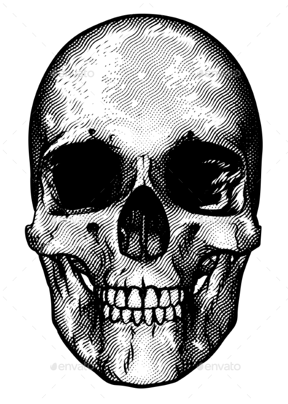 Skull Retro Style Drawing - Miscellaneous Vectors