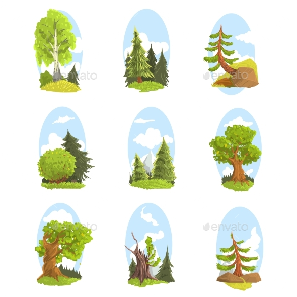 Natural Landscape with Various Trees Set - Landscapes Nature
