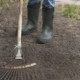 Gardener Wearing Rubber Boots Raking Soil