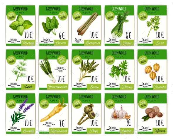 GraphicRiver Vector Price Cards Set for Spices and Herbs 20307728