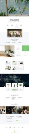 02 home agency02.  thumbnail