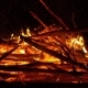 Real Big Fire on Nature - VideoHive Item for Sale