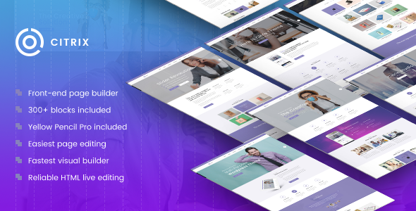 ThemeForest Citrix Business WordPress Theme 20307935