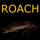 Cockroach - 4 Pack - VideoHive Item for Sale