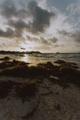 Beach in Tulum - PhotoDune Item for Sale