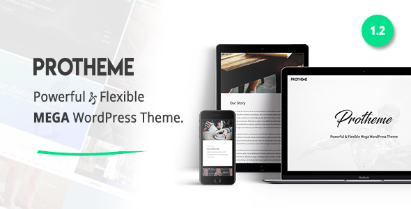 Protheme - Powerful & Flexible Mega WordPress Theme