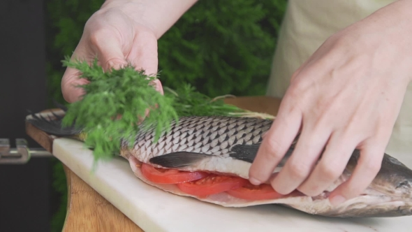 VideoHive Housewife Is Stuffing Raw Fish with Fennel Carp Fish on the Board Cooking Fish Meals Outdoors 20320872