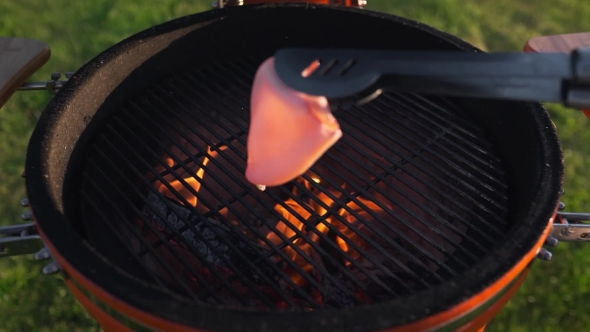 VideoHive Calamari Are Grilling on the Red Coals of the Grill in the Summer Seafood Barbecue Roasted Fish 20320907