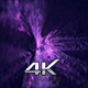 Purple Abstract - VideoHive Item for Sale