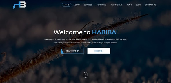 Habiba - Portfolio and Cv HTML-5 Bootstrap Template - Portfolio Creative