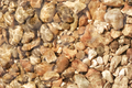 pebbles - PhotoDune Item for Sale
