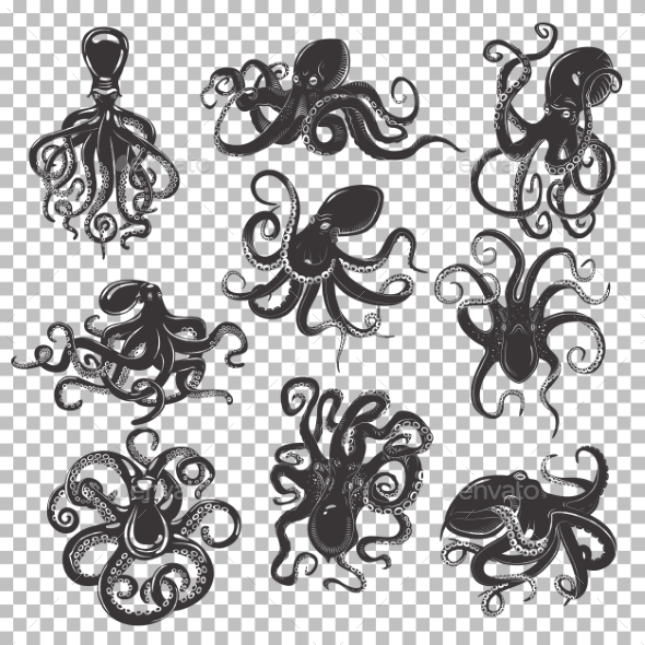 Set of Isolated Octopus Mascot or Tattoos - Animals Characters