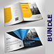 Bi-fold Brochure Bundle - GraphicRiver Item for Sale