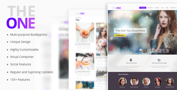The ONE - Social Multipurpose WordPress Theme - BuddyPress WordPress