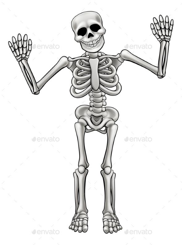 Cartoon Standing Skeleton - People Characters
