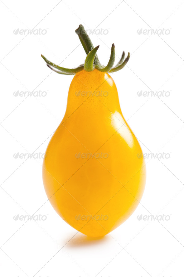 yellow tomato on white background - Stock Photo - Images