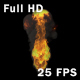 The Fire - VideoHive Item for Sale