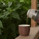Brown Thermos with Tea Outdoors
