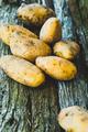 Potatoes - PhotoDune Item for Sale