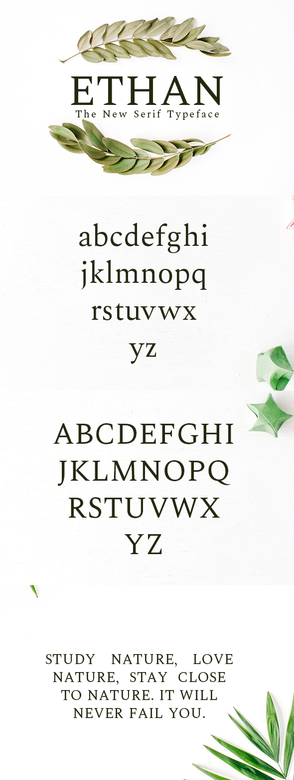 GraphicRiver Ethan The New Serif Typeface 20335994