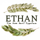 Ethan The New Serif Typeface
