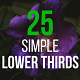 25 Simple Lower Thirds - VideoHive Item for Sale