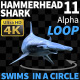 Hammerhead Shark 11 Swims in a Circle-1 - VideoHive Item for Sale