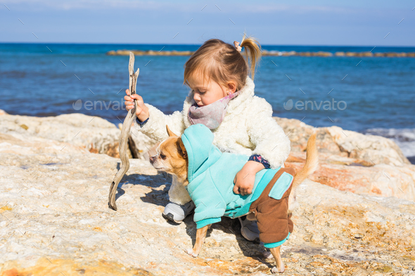 Child, pet, summer and vacation concept - Little girl with chihuahua dog on seashore - Stock Photo - Images