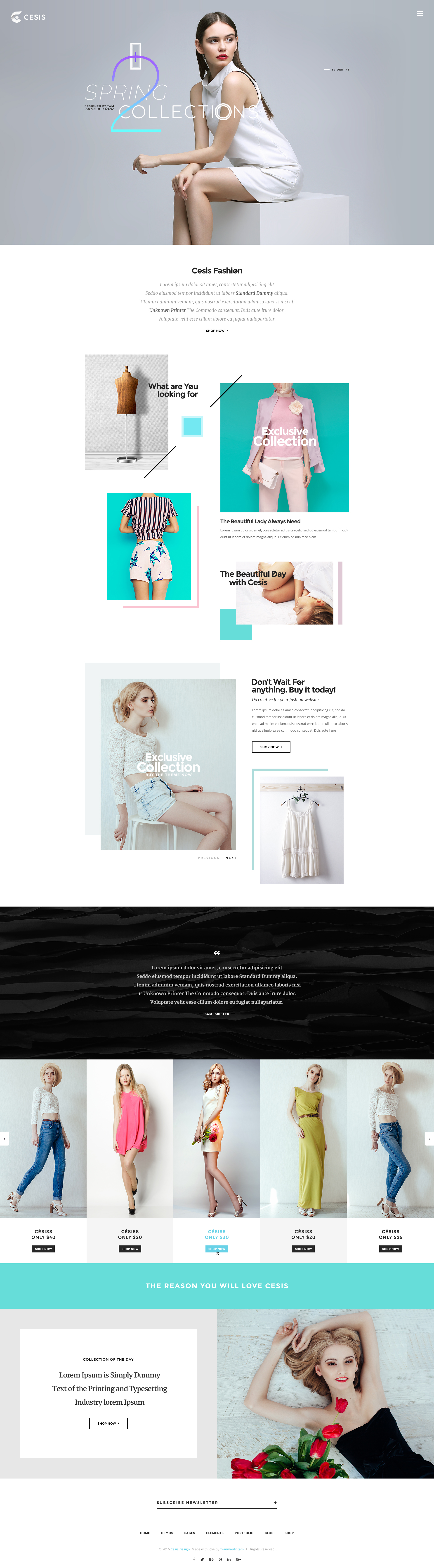 Cesis | Ultimate Multi-Purpose PSD Template by
