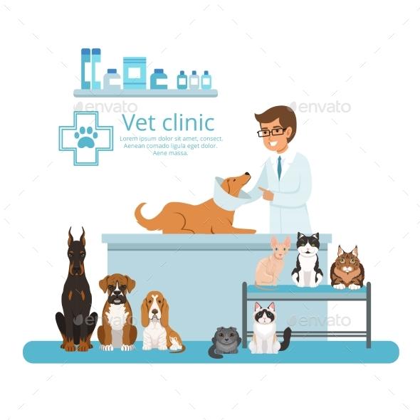 Animals in Cabinet of Vet Hospital. Vector - Miscellaneous Vectors
