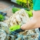 Choosing Garden Rocks - PhotoDune Item for Sale