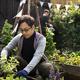Free Download Asian man gardening tranplanting outdoors Nulled