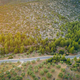 On top olivie farm and local road. - PhotoDune Item for Sale