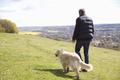 Rear View Of Man Taking Golden Retriever For Walk