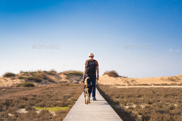 View from behind of a man walking with his dog on a road leading through beautiful landscape - Stock Photo - Images