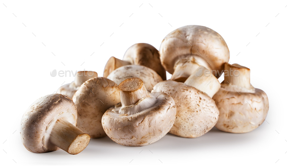 Pile of raw mushroom champignon isolated on white background - Stock Photo - Images