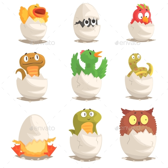 Birds and Reptiles Hatch From Eggs Set - Animals Characters