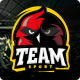 Team - Soccer, Football, Hockey, Basketball | eSport & Gaming | Sport Club HTML Template Nulled