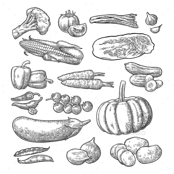 Set of Vegetables - Food Objects