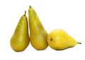 three pears - PhotoDune Item for Sale