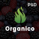 Origanico - Organic Online Store PSD Template - ThemeForest Item for Sale