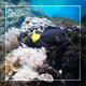 Uderwater World 1 - VideoHive Item for Sale