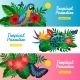 Tropical Horizontal Banner Set