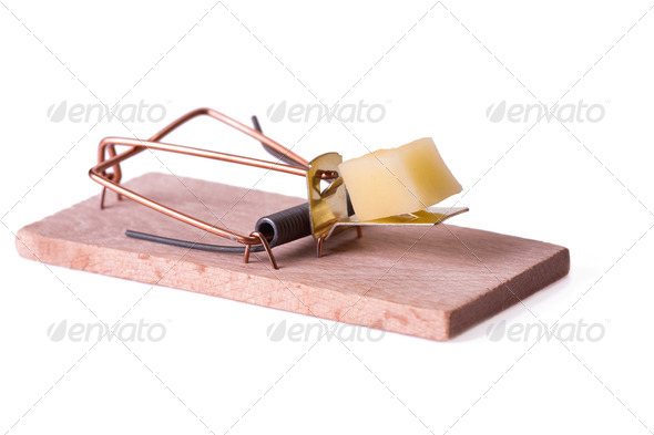 mousetrap with cheese - Stock Photo - Images