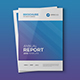 Clean Annual Report 16 Pages - GraphicRiver Item for Sale
