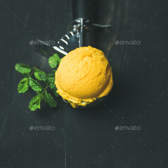 Mango sorbet ice cream scoop in scooper, square crop - Stock Photo - Images