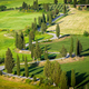 Winding cypress road in Monticchiello, Tuscany - PhotoDune Item for Sale