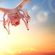 drone in the  sunset sky - PhotoDune Item for Sale